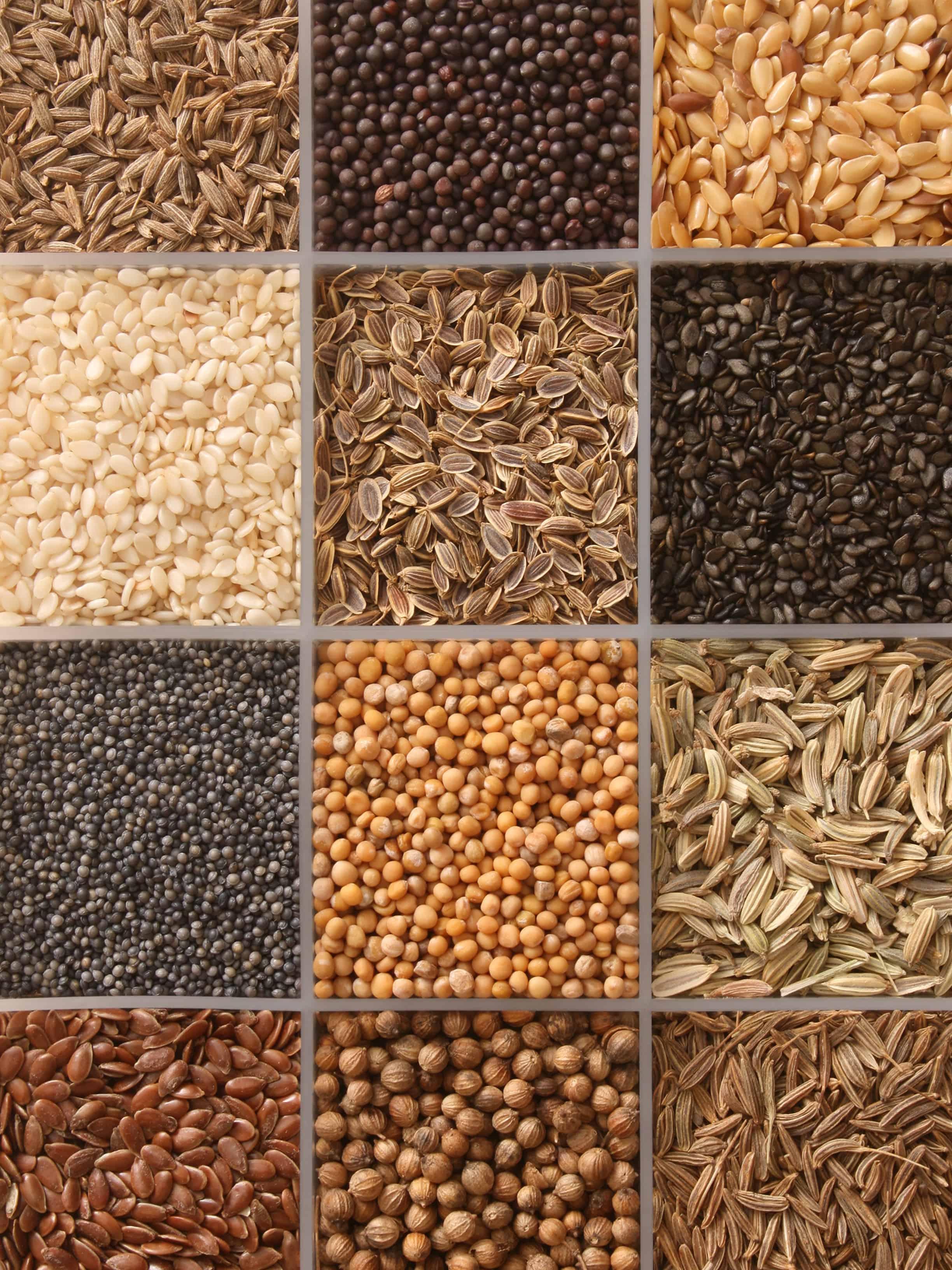 Twelve varieties of seeds in plastic container